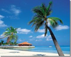 Полезные советы тем, кто планирует путешествие на Гавайские острова