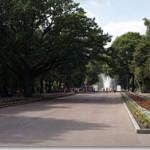 Харьков: сады и парки