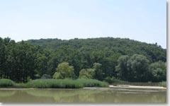 Минеральные воды Черновицкой области