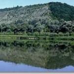 Гидрокарбонатные минеральные воды Черновицкой области