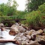 Природные ресурсы Южной Сибири