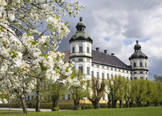 Почему стоит приобрести туры в Скандинавию от туроператора?