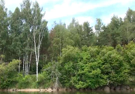 Озеро Нарочь_03