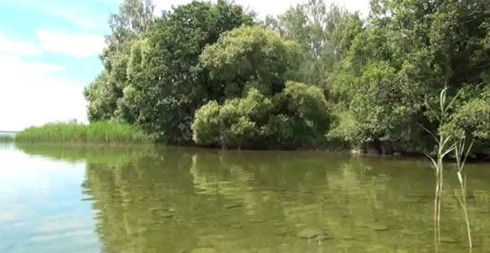 Озеро Нарочь_04