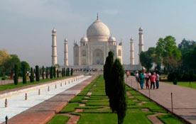 Что привезти из Индии