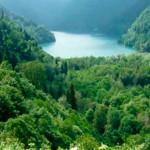 Озеро Рица с высоты птичьего полета