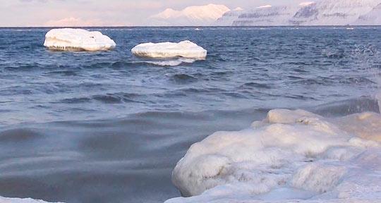 В водах архипелага Шпицберген плавают айсберги