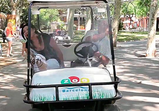 Можно взять электромобиль для передвижения по зоопарку