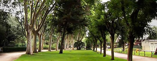 Зеленые лужайки - излюбленное место отдыха родителей с детьми