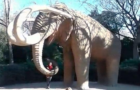 Статуя мамонта в натуральную величину