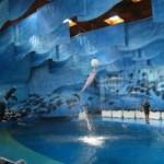 Зоопарк в Барселоне — замечательное место для отдыха