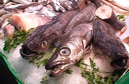 Сердце рынка Бокерия - рыбные ряды