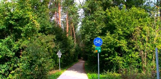 Венский лес 1