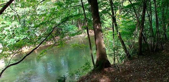Венский лес 2