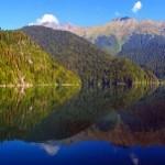 Экскурсия на озеро Рица