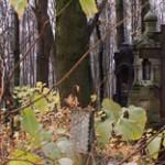 Как добраться до Смоленского кладбища