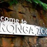 Зоопарк Таронга в Сиднее