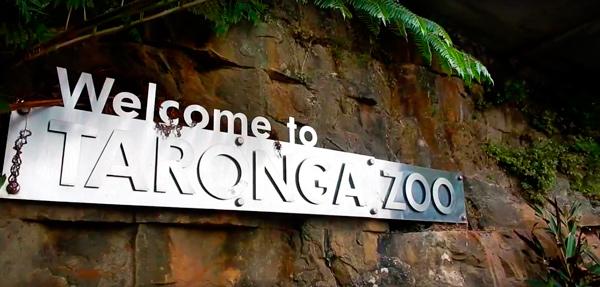Зоопарк-3