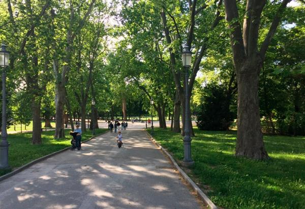 3-Герцогский-парк