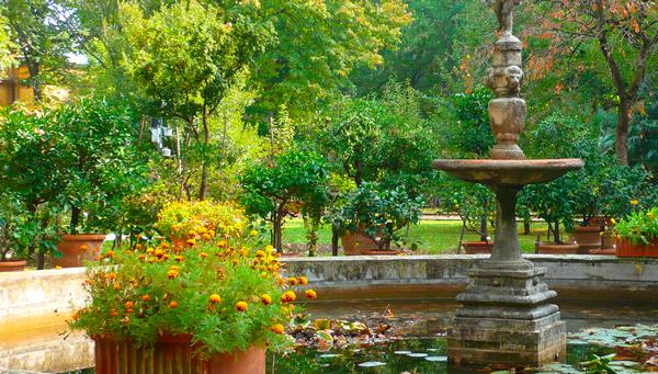 4-Ботанический-сад-Пизы