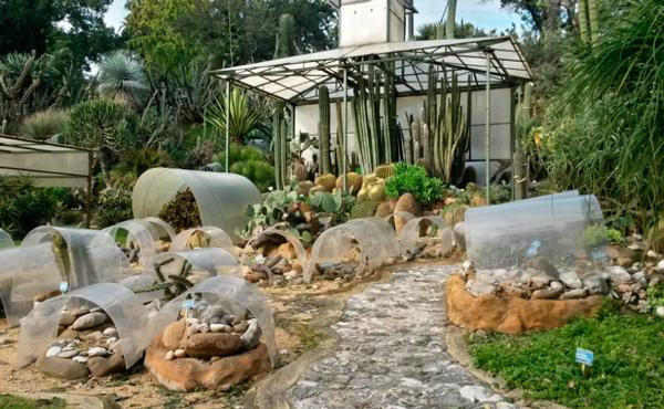 23-Ботанический-сад-Неаполя