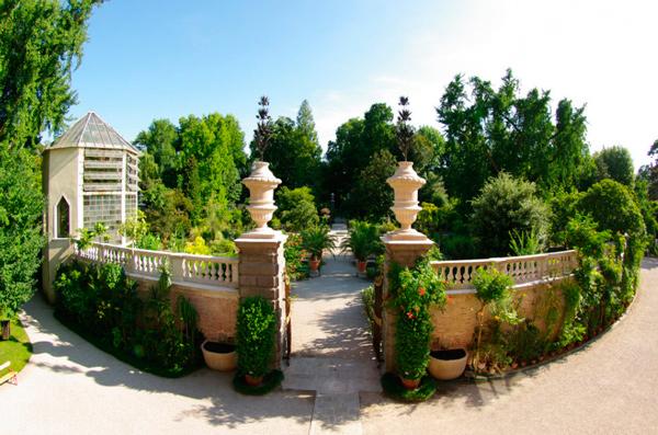 3-Ботанический-сад