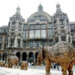 Проездом в Антверпене