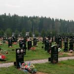 Как доехать до Перепечинского кладбища (адрес)